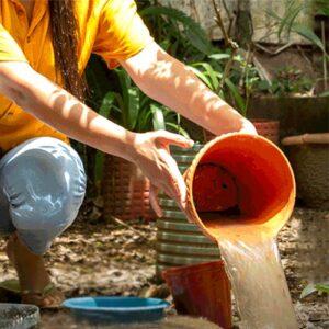 Lee más sobre el artículo 26 de Agosto / Día Internacional contra el Dengue